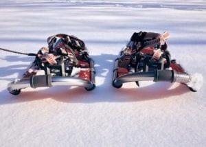 Rolling Terrain Snowshoe
