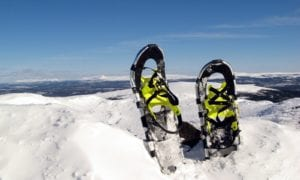 What Are The Different Kinds Of Snowshoes?