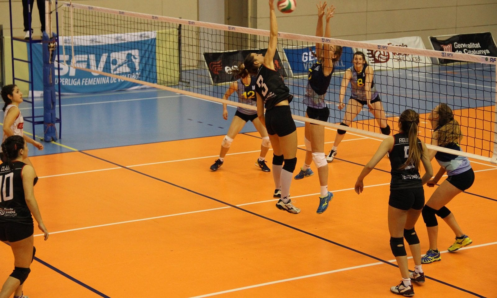 playing-volleyball-image
